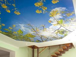 Арт-потолки с дизайнерским фотоизображением